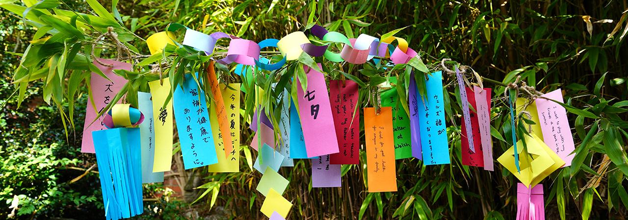The Japan Society - tanzaku